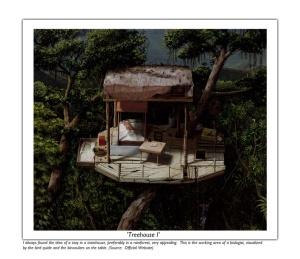 J.S. Treehouse