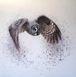 Ewoud de Groot Featured Artist