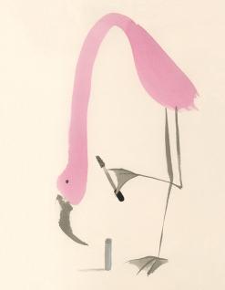 ∫Flamingo | The R. U. Fauna Department Store Catalog | 2009 © Anna Raff