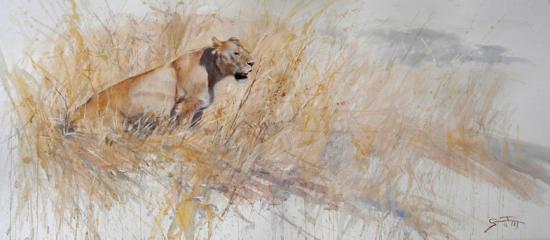 Ngorongoro lejon / Akvarell / 60x152cm / Scottsdale Salon of fine Art 2012 / Såld - Gunnar Tryggmo