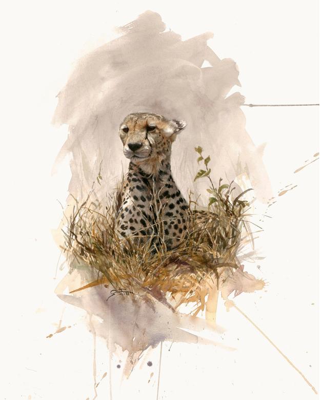Cheetah / Akvarell / 92 x 62 cm / såld - Gunnar Tryggmo