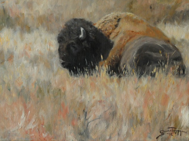 Lonely dreamer / Bison / Oil on canvas / 9x12 inches / Western Visions 2012, National Museum of wildlife art - Gunnar Tryggmo