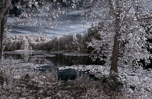 Fairyland – Infrared, Beaver pond, Plymouth, Connecticut ©2014 Robert Marsala