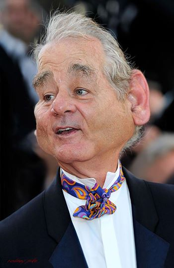∫ Bill Murray © Rodney Pike.