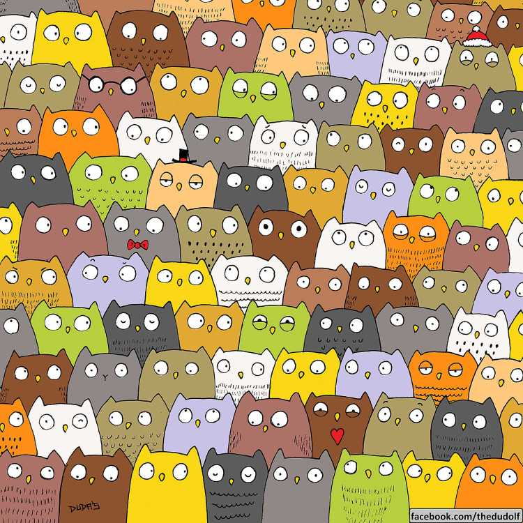 Find the cat among the owls puzzle